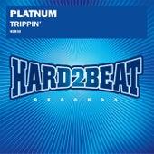 Trippin' by Platnum