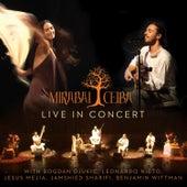 Mirabai Ceiba: Live in Concert by Mirabai Ceiba