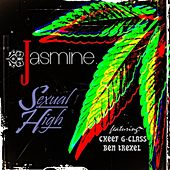 Sexual High (feat. Cheef G-Class & Ben Trexel) by Jasmine