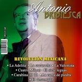 Revolucion Mexicana by Antonio Bribiesca