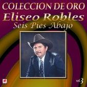 Colección de Oro, Vol. 3: Seis Pies Abajo by Eliseo Robles
