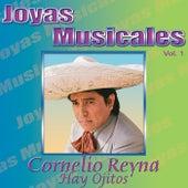 Joyas Musicales, Vol. 1: Hay Ojitos by Cornelio Reyna
