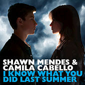 I Know What You Did Last Summer by Shawn Mendes