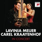 Hello Stranger (Live) by Carel Kraayenhof