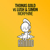 Morphine by Thomas Gold
