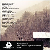 One Electronic Night In December by Various Artists