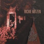 Bi-Polar Blues by Richie Kotzen
