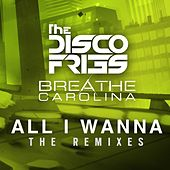 All I Wanna The Remixes by Disco Fries