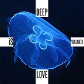 Deep is Love, Vol. 3 by Various Artists