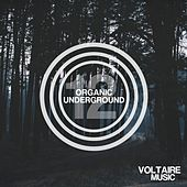 Organic Underground Issue 12 by Various Artists