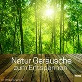 Natur Geräusche zum Entspannen by Entspannungsmusik