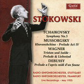 Leopold Stokowski by Various Artists