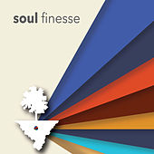 Soul Finesse by Various Artists