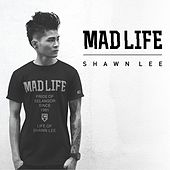 Madlife by Shawn Lee's Ping Pong Orchestra
