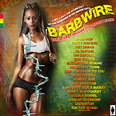 Barbwire - sexy reggae hits by Various Artists
