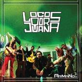 Armando by Locos Por Juana