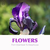 Flowers, Vol. 1 (From Downbeat to Deep House) by Various Artists