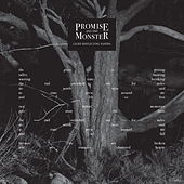 Light Reflecting Papers by Promise And The Monster