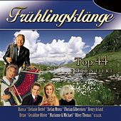 Top44 Frühlingsklänge Teil 2 by Various Artists