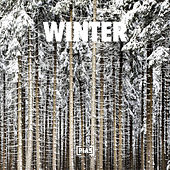 Winter von Various Artists