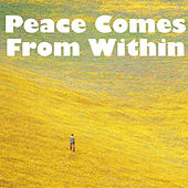 Peace Comes From Within by Various Artists