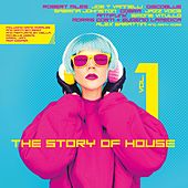 The Story of House, Vol. 1 von Various Artists