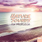 Nature Sounds for Meditation by Ocean Sounds