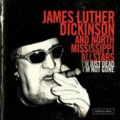 I'm Just Dead, I'm Not Gone by North Mississippi Allstars
