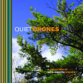 Quiet Drones by Various Artists