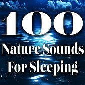 100 Nature Sounds for Sleeping by Various Artists