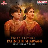 Palinchu Sharvani by Priya Sisters