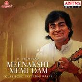 Meenakshi Memudam by U. Srinivas