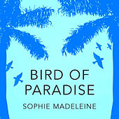 Bird of Paradise by Sophie Madeleine