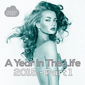 A Year in the Life of Heavenly Bodies: 2015 Part 1 by Various Artists