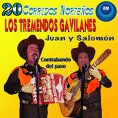 20 Corridos Norteños (Juan y Salomón) by Los Tremendos Gavilanes