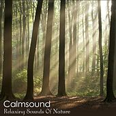 Relaxing Sounds Of Nature - The Pure Meditation Album by Calmsound