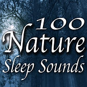 100 Nature Sleep Sounds by Various Artists