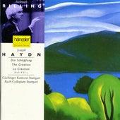 Haydn: Die Schöpfung / The Creation / La Création by Gachinger Kantorei Stuttgart