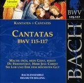 J.S. Bach - Cantatas BWV 115-117 by Bach-Collegium Stuttgart