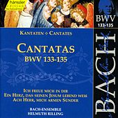 Cantatas BWV 133, 134 and 135 by Bach-Collegium Stuttgart