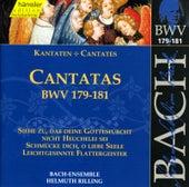 J.S. Bach - Cantatas BWV 179-181 by Bach-Collegium Stuttgart