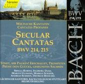 J.S. Bach - Secular Cantatas BWV 214, 215 by Bach-Collegium Stuttgart
