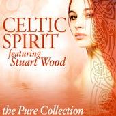 Celtic Spirit: The Pure Collection (feat. Stuart Wood) by Celtic Spirit