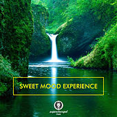Sweet Mood Experience by Various Artists
