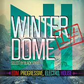Winterdome, Vol. 1 (Select By Black Spirit) by Various Artists