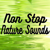 Non Stop Nature Sounds by Various Artists