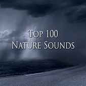 Top 100 Nature Sounds (Sleep) by Various Artists