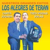 Nuestros Grandes Éxitos by Los Alegres de Teran