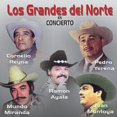 Los Grandes del Norte en Concierto by Various Artists