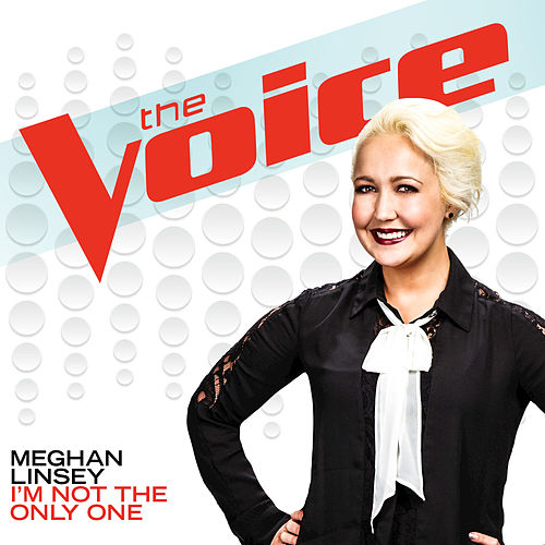 I'm Not The Only One by Meghan Linsey